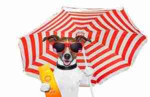 Sunscreen, think before you slip slap slop