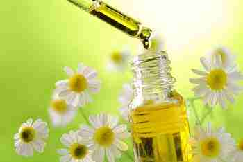Best Face Oils for Oily Skin